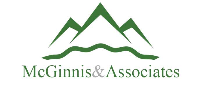 McGinnis and Associatess